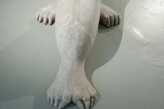 48_Sjolejonhund