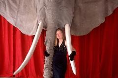 71_Elefant